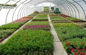 CAP Métiers de l'agriculture